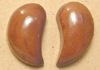 214td-CO tagua nut earrings.