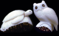 sea turtle and owl carved in relief on tagua nuts.