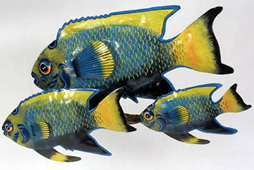 Recycled metal fish art from Haiti.