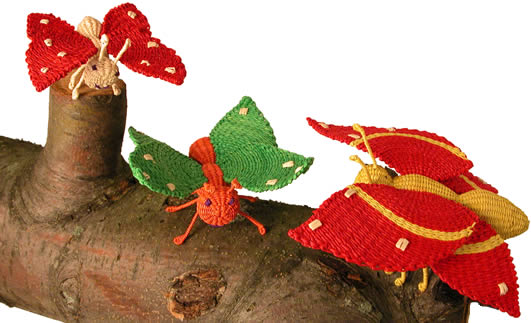 Jipijapa butterflies - from Bolivia - woven from a palm plbutterfly.