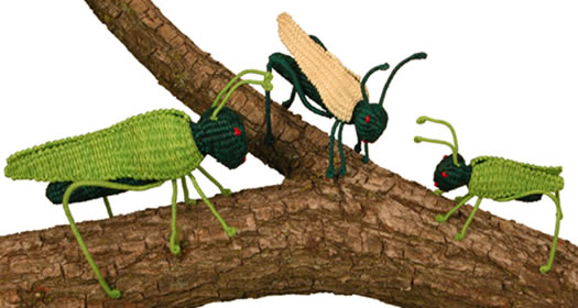 Jipijapa Grasshoppers - from Bolivia - woven from a palm plGrasshopper.
