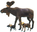Moose Group